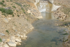 Petit Barrage a ouitlene Msila (3)